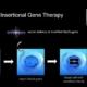 Réhabilitation fonctionnelle dans un modèle de syndrome d'Angelman après traitement avec des cellules souches hématopoïétiques transduites par lentivecteur