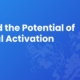 UPD ICD Activation